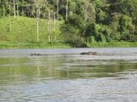 Propiedades, casas, y apartamentos frente al rio en nicaragua